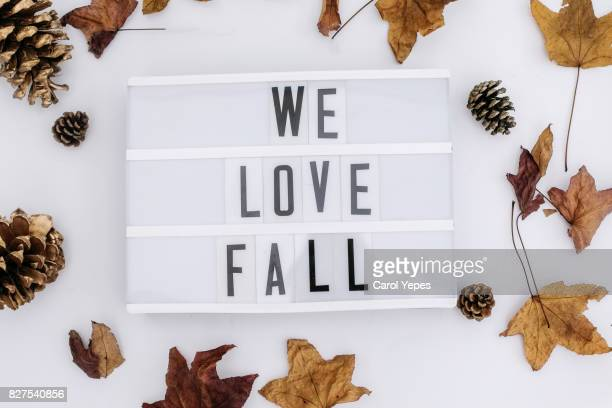 we love the fall message in a lightbox