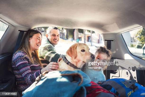 we love to travel - family driving stock photos and pictures