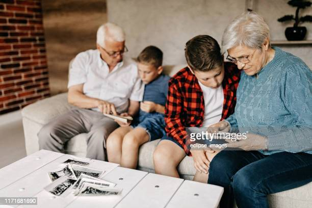 we were young, too - family tree stock pictures, royalty-free photos & images