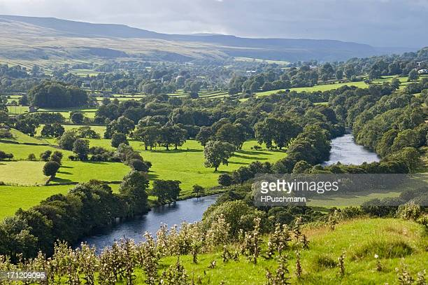 weardale - valley stock pictures, royalty-free photos & images