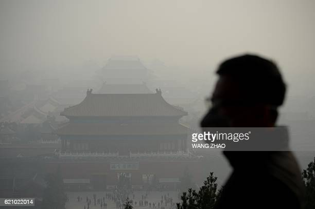 TOPSHOT A wearing a face mask visits a park near the Forbidden City during heavy smog in Beijing on November 4 2016 / AFP / WANG ZHAO
