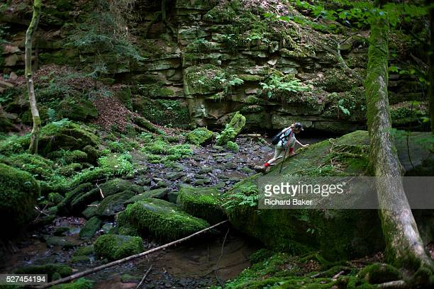 Wearing a peaked cap and small rucksack a young adventurer scales a giant boulder in the ancient forest of Monbachtal Bach in Germany's Black Forest...
