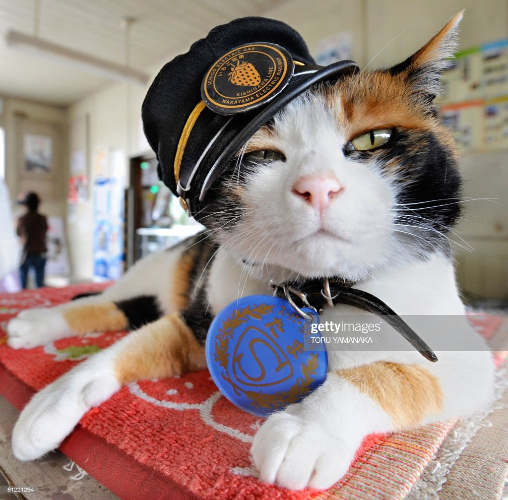 Wearing a stationmaster's cap of Wakayam : Fotografía de noticias