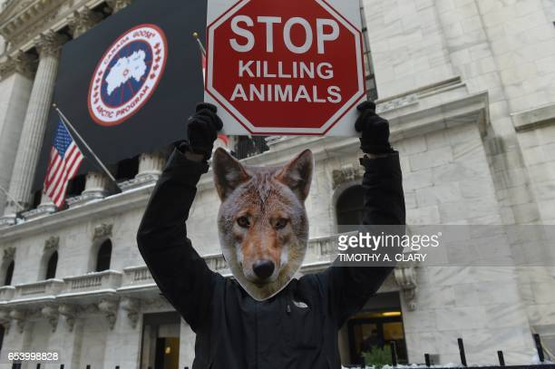 Wearing coyote masks and business suits and waving signs against Canada Goose and their use of fur PETA members gather outside the New York Stock...