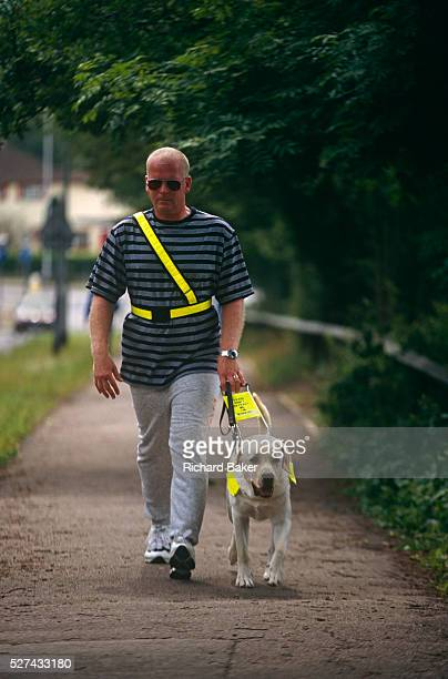 Wearing darkened glasses unsighted Tim Gutteridge walks along a suburban pavement near to The Guide Dogs for the Blind Association's offices in...
