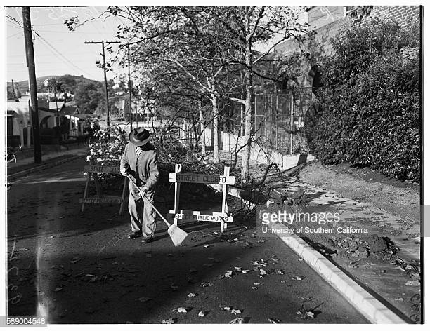 Weather picture Tree down at 6130 Poppy Peak Street Eagle Rock Frank Caldwell 85 years Los Angeles California October 25 1951