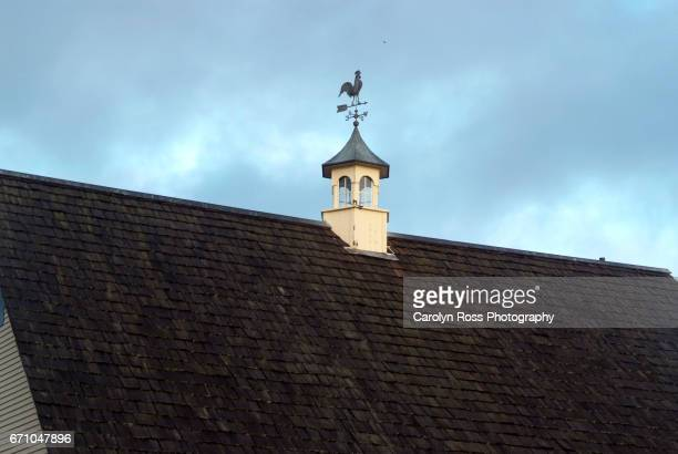 weather vane - carolyn ross stock pictures, royalty-free photos & images