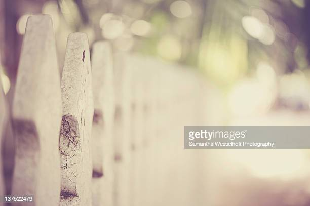 Weathered white picket fence