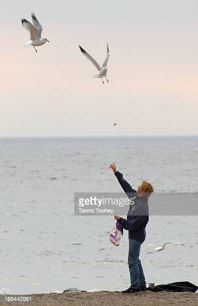 WeatherOctober 31 2006Dolores Pitcher treats some seagulls to some stale bread on her daily walk in Toronto's Beach neighbourhoodTuesday October 31...