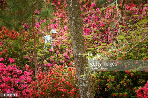 Webb Simpson of the United States looks for his ball on the 13th hole during the second round of the Masters at Augusta National Golf Club on April...