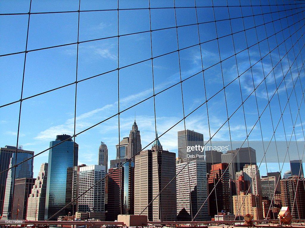 Webbed bridge cables : Stock Photo