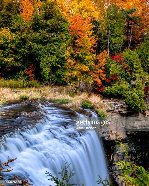 webster's falls - ontario canada stock pictures, royalty-free photos & images