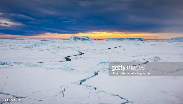 weddell sea ice - eisheilige stock-fotos und bilder
