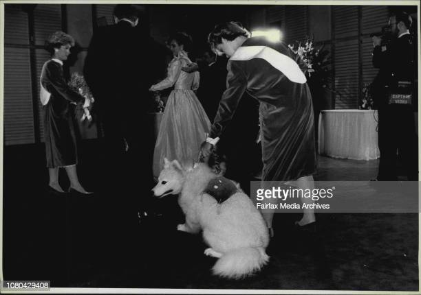 Wedding At The Opera House The Wedding in progress the dog champagne carried the rings May 26 1985