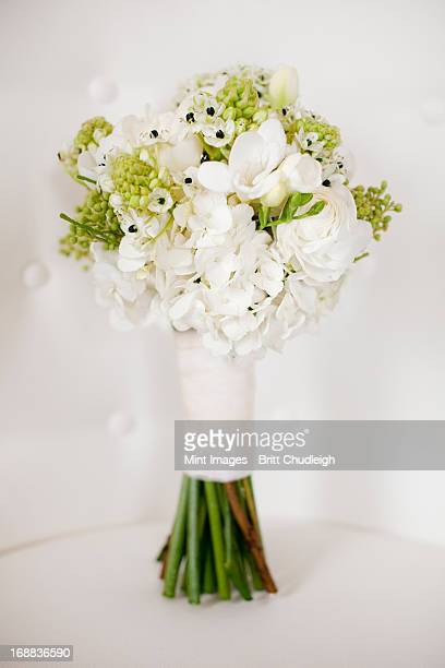 a wedding bouquet. white cut flowers, green seed heads, and foliage. green stems and white ribbon. - utah wedding stock pictures, royalty-free photos & images