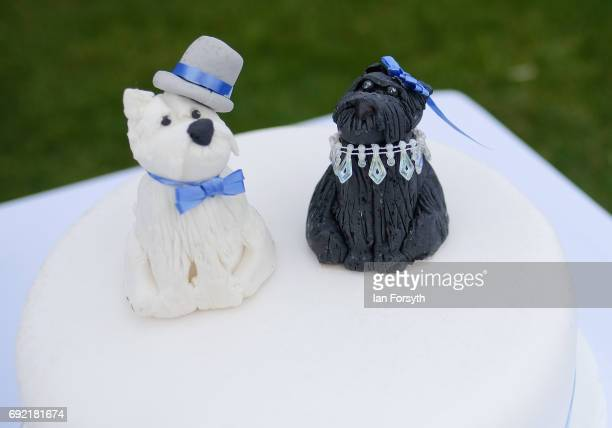 Wedding cake is decorated with dog figures ahead of a dog wedding during events at the Great North Dog Walk on June 4, 2017 in South Shields,...