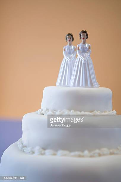 Wedding cake with two brides