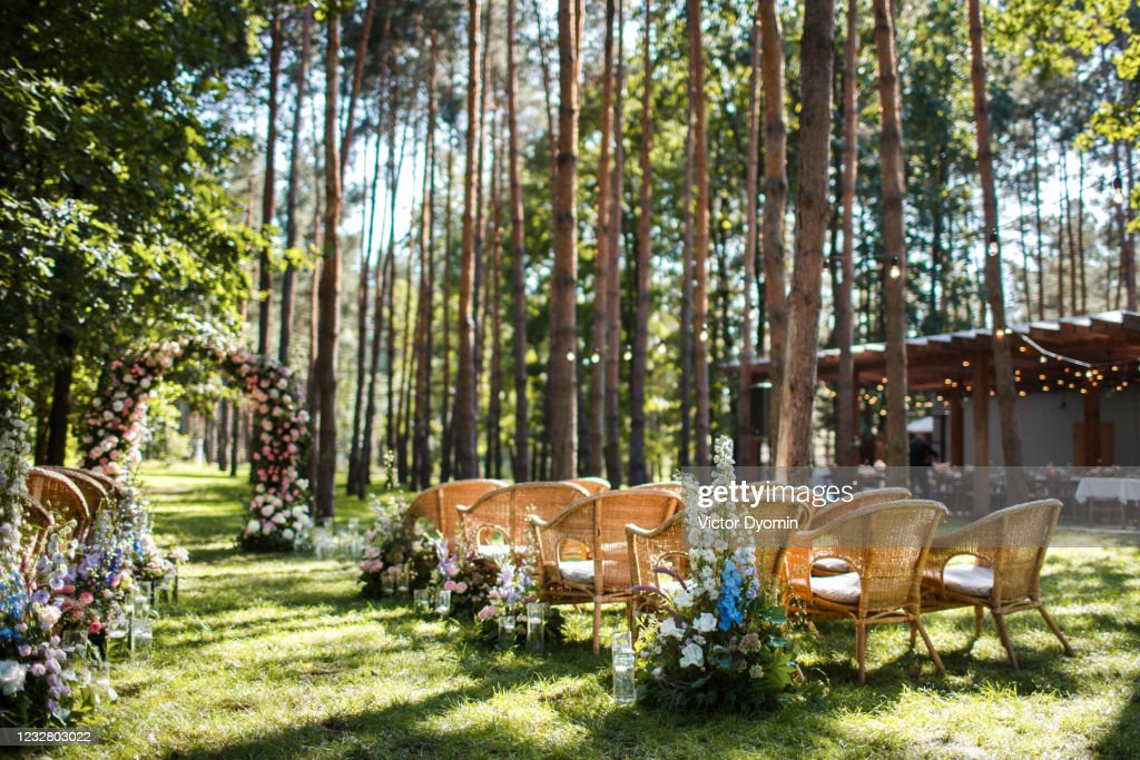 Wedding ceremony decorations in the green forest : Stock Photo