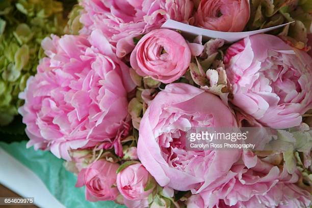 wedding flowers - carolyn ross stock pictures, royalty-free photos & images