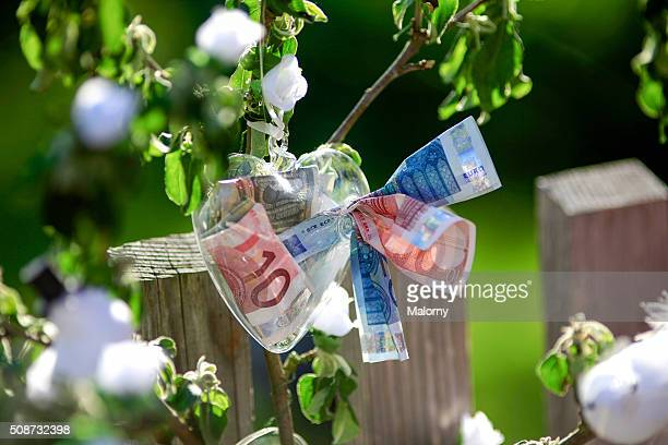 Wedding gift. Plant with flowers made from Euro bank notes.