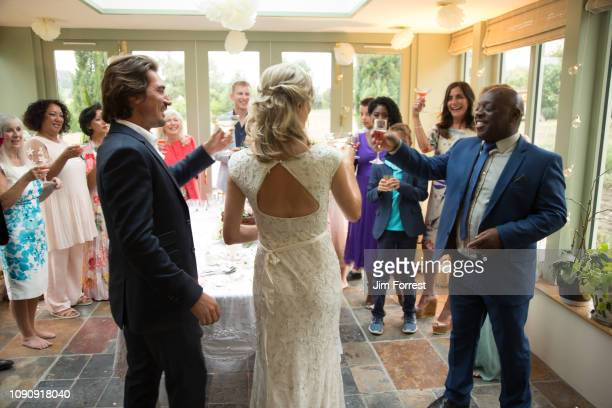wedding guests toasting to newlyweds at reception - guest stock pictures, royalty-free photos & images