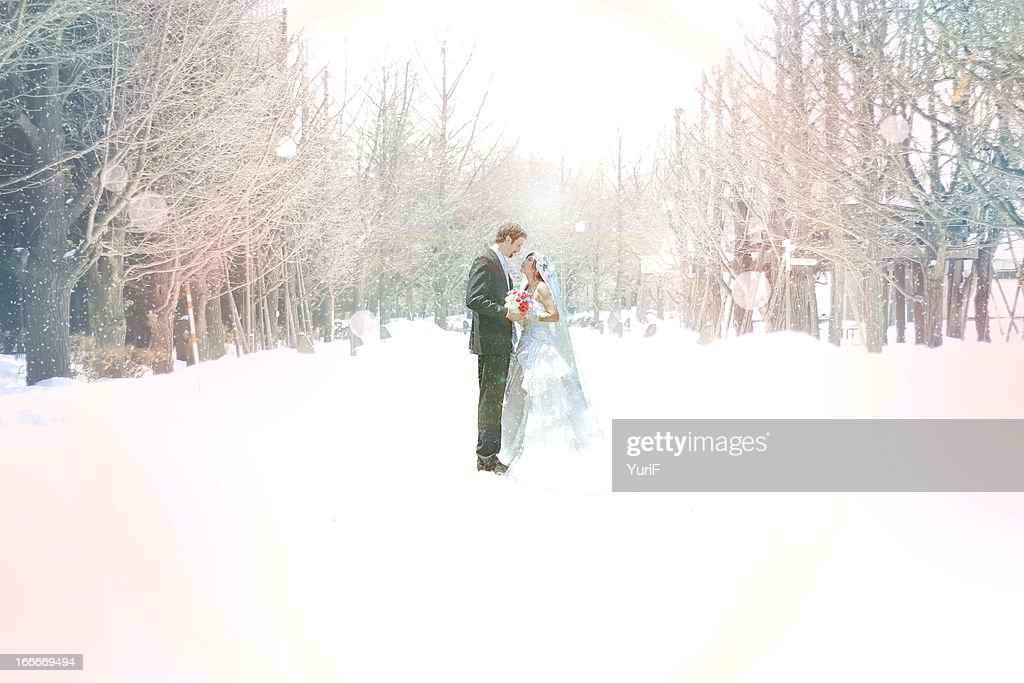 Wedding in snow. : Stock Photo