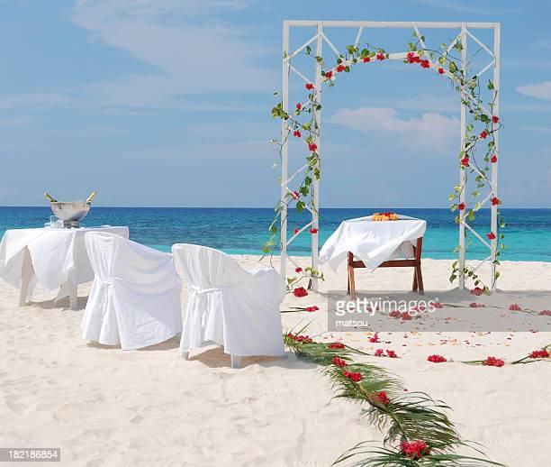 Wedding in tropic