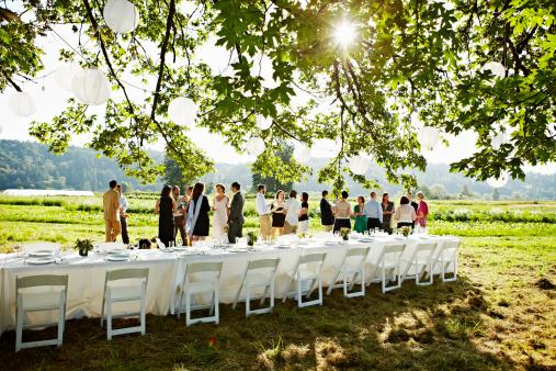 Wedding party having appetizers in field - gettyimageskorea