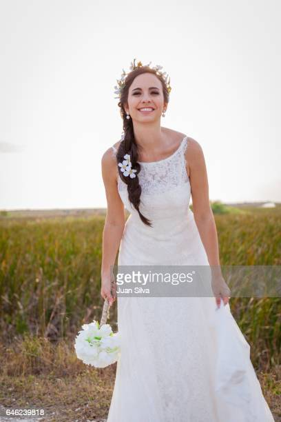 wedding - coral springs stock pictures, royalty-free photos & images