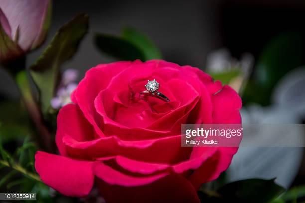 Wedding ring inside red rose