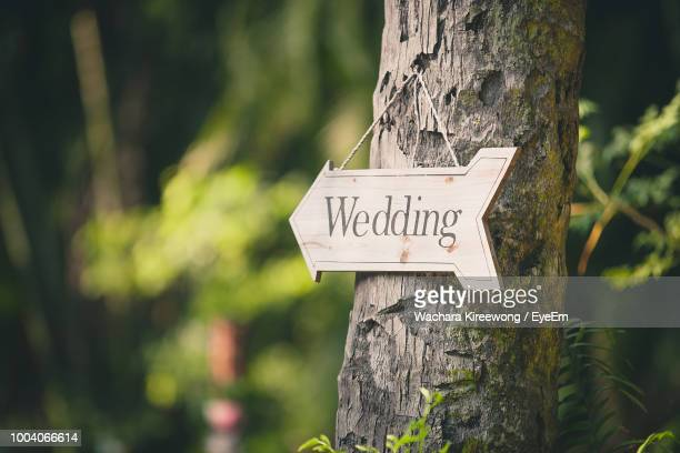 wedding sign on tree - environmental signs and symbols stock pictures, royalty-free photos & images