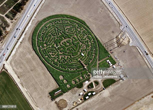 Wednesday 6/7/2000 Camarillo CA –– Aerial view of The Amazing Maize Maze featuring the Aztec calendar located at the corner of Hueneme Rd and Las...