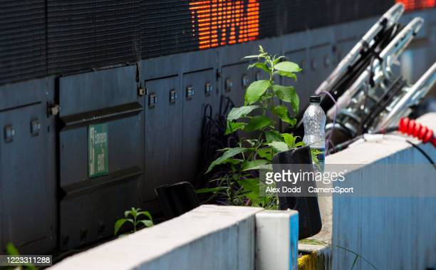 Weeds grow behind the advertising boards inside Elland Road during the Sky Bet Championship match between Leeds United and Fulham at Elland Road on...