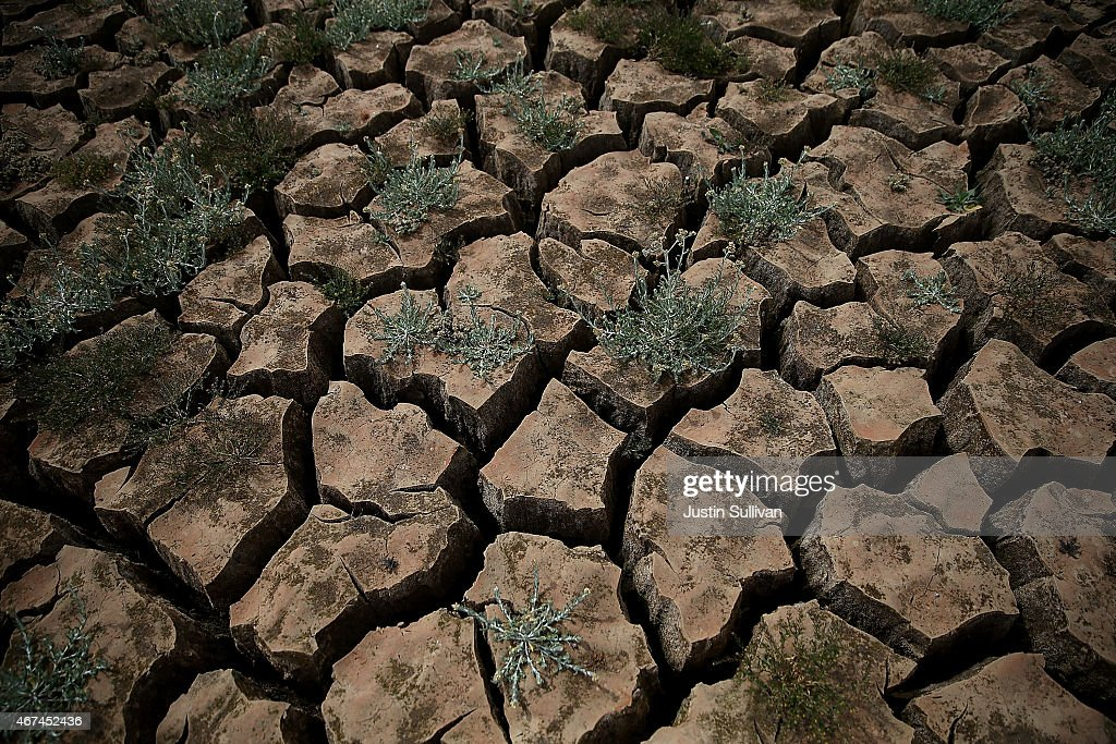 Drought-Stricken California Community Close To Running Out Of Water : Nyhetsfoto