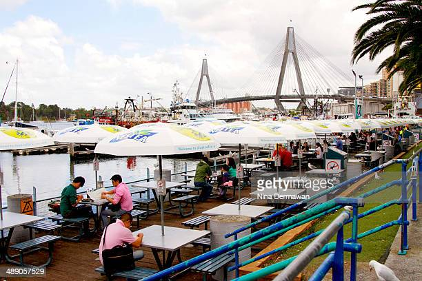 A weekday at the Sydney Fish Market