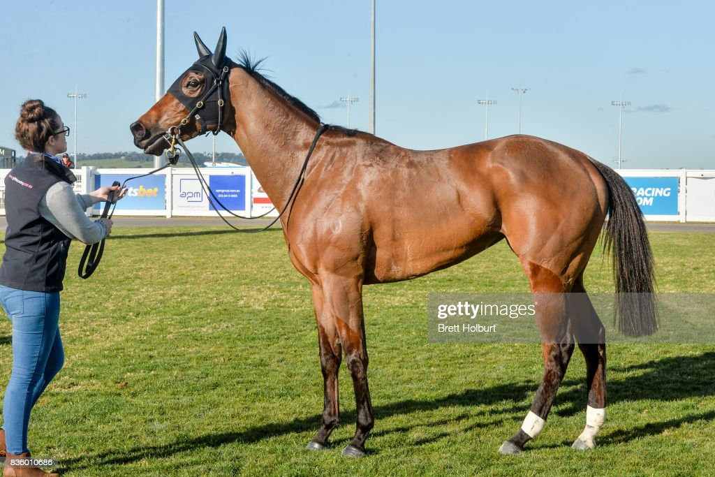 Weekend Escape after winning Dasame Investments BM64 Handicap at Racing.com Park Synthetic Racecourse on August 20, 2017 in Pakenham, Australia.