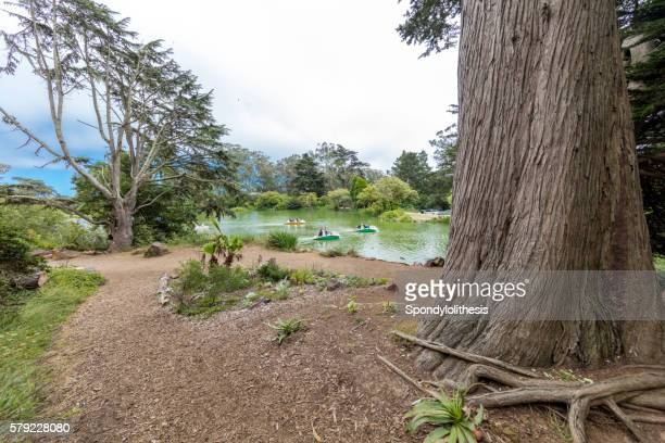 Weekend Leisure Activity in Stow Lake, San Francisco