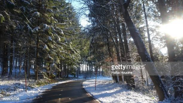 weg im winter am land landschaft im wald - wald stock pictures, royalty-free photos & images