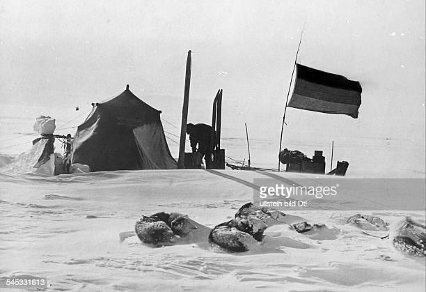 Wegener Alfred *18801930Geophysiker Polarforscher DGrönlandexpeditionAm Morgen nach einem Schneesturm imInlandeis Das Zelt wurde...
