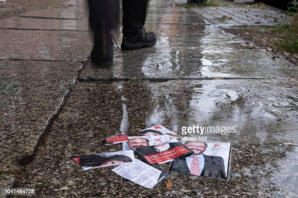 Weggeworfene Flyer von SPD Spitzenkandidat Martin Schulz zur bevorstehenden Bundestagswahl liegen auf regennassem Gehweg