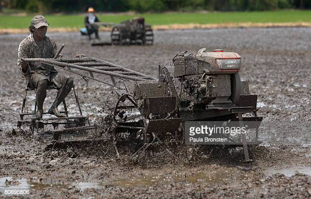 Weicharn a rice farmer plows his rice field before planting a new crop April 16 2008 in Ayutthaya Thailand Fears of a looming rice shortage were...