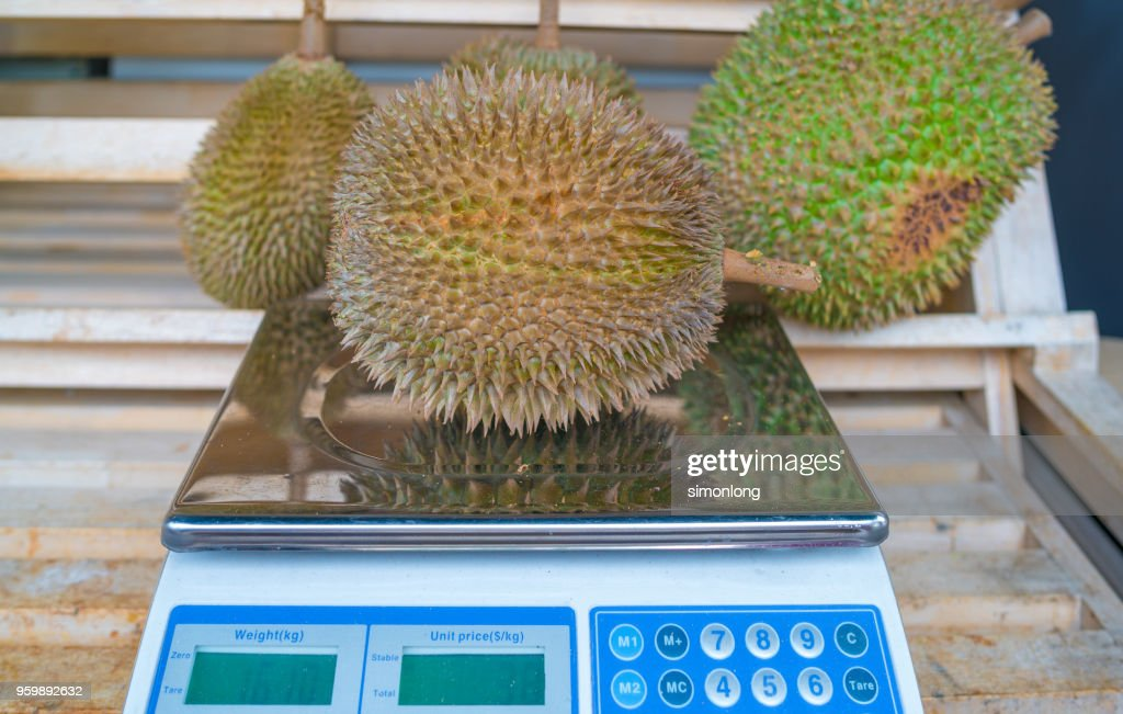 Weighing the durian : Stock-Foto