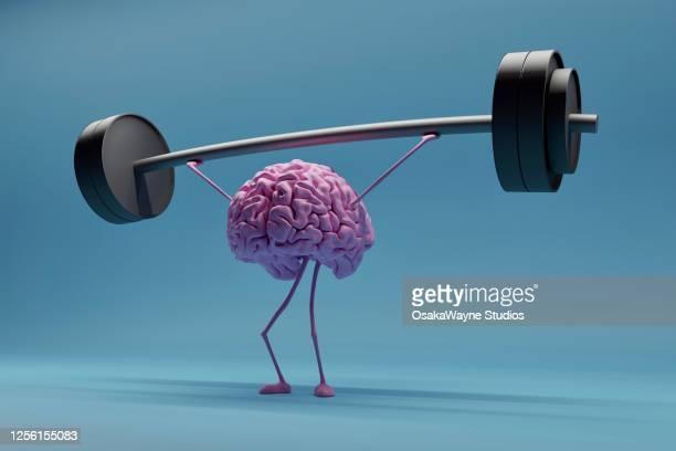 weightlifting brain - hjärna bildbanksfoton och bilder