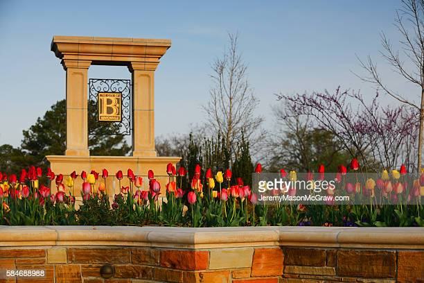 welcome to bentonville sign in spring flowers - bentonville stock photos and pictures
