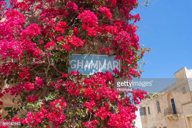 Welcome to Ghammar, Gozo