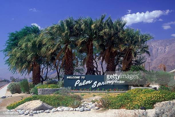 welcome to palm springs sign and palm trees, palm springs, ca - palm springs california stock pictures, royalty-free photos & images