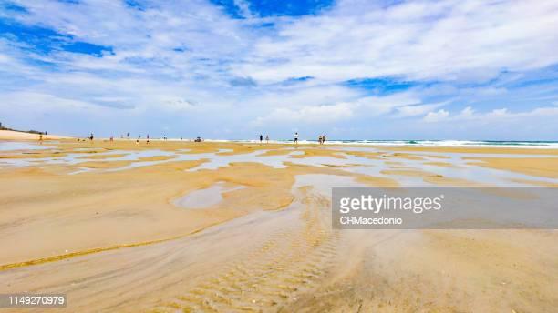 welcome to the beach! - crmacedonio imagens e fotografias de stock