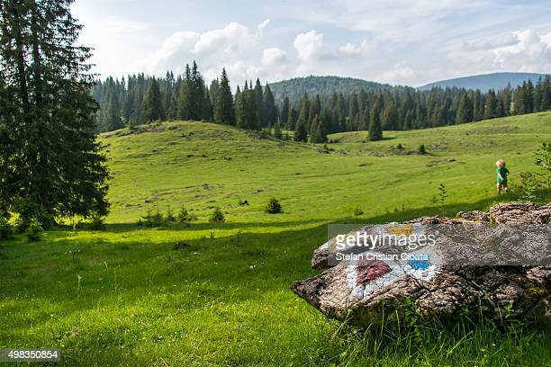 welcome to transylvania - トレイル表示 ストックフォトと画像