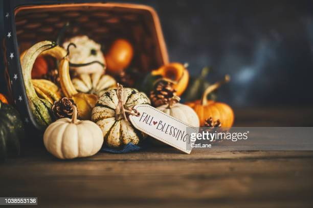 welcoming fall with pumpkin assortment still life and blessings greeting - happy thanksgiving card stock pictures, royalty-free photos & images