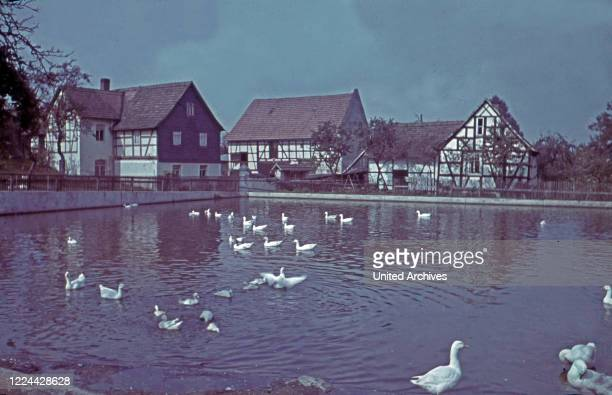 Well with ducks at the village Traun in Thuringia, Germany 1930s.
